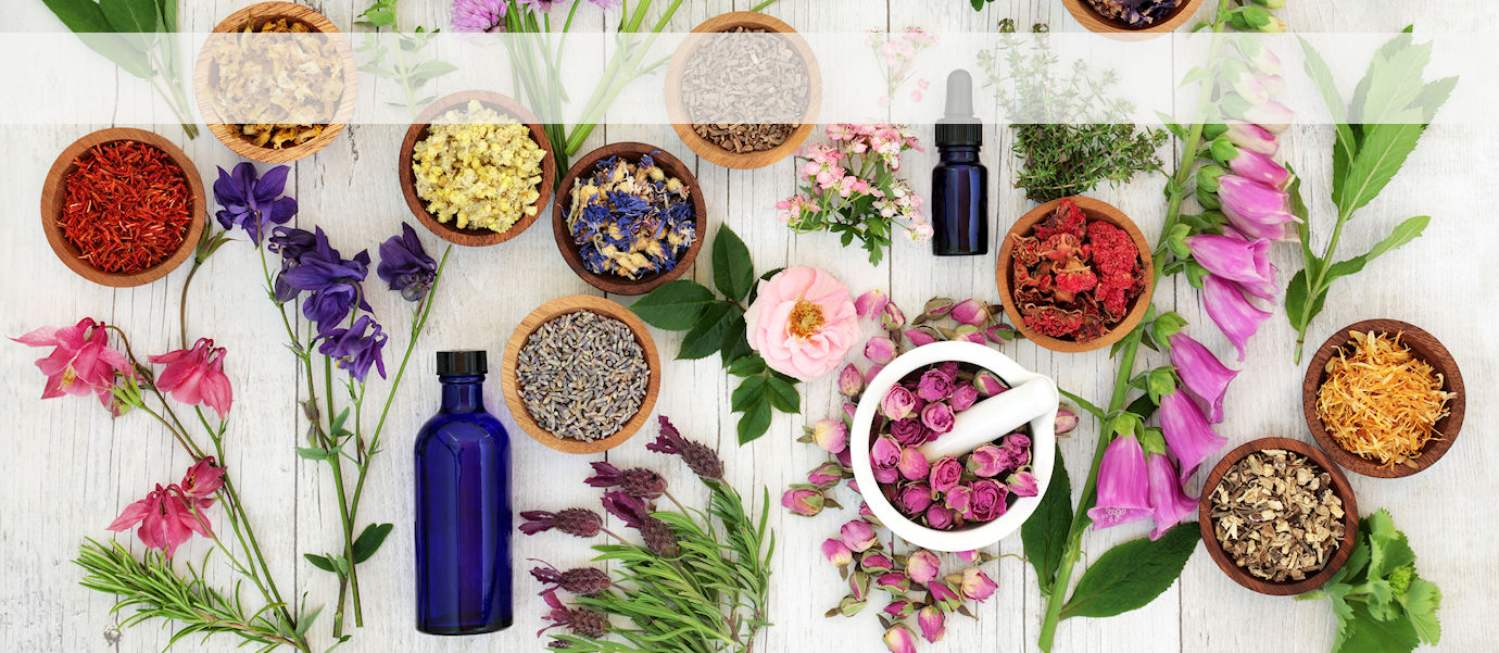 Herbs, Flowers and Aromatics for Self-Healing