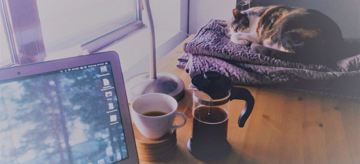 Studying Met Pro Training at a Computer with Coffee and a Cat
